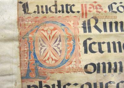 Detalle de una inicial decorada con motivos vegetales  a dos tintas de un Antifonario del S.XVI